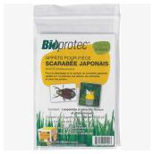 Japanese Beetle Sexual Pheromone and Floral Attractant