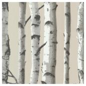 Wallpaper - Birch Forest - 20