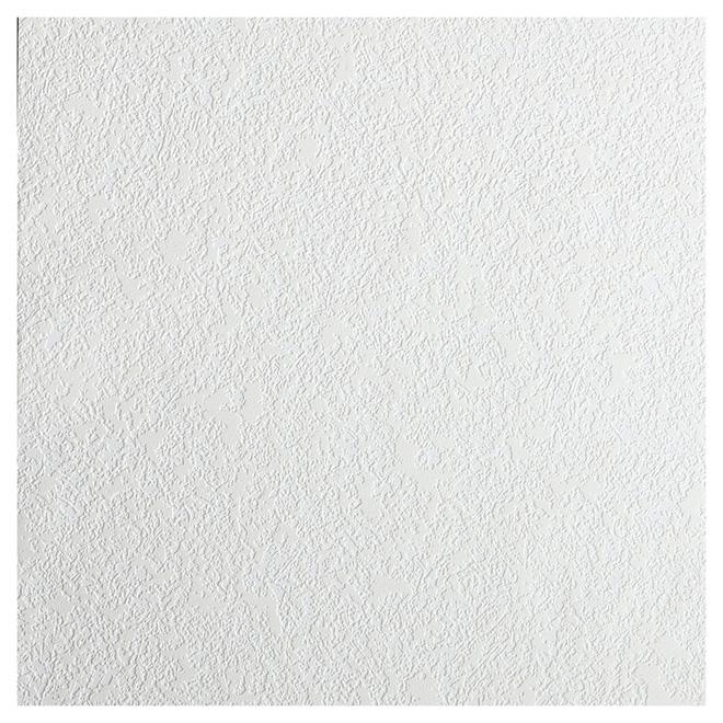 papier peint textur peindre 20 5 x 33 39 blanc 497. Black Bedroom Furniture Sets. Home Design Ideas