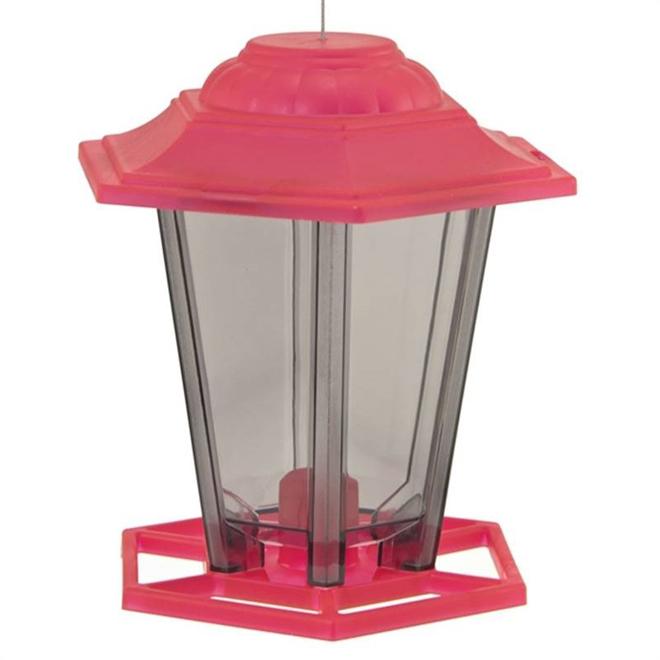 Mangeoire à oiseaux, lanterne, couleurs assorties