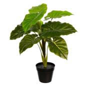 Danson Decor Plastic Philodendron - 24-in