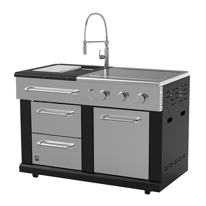 Modular Sink and Side Burners