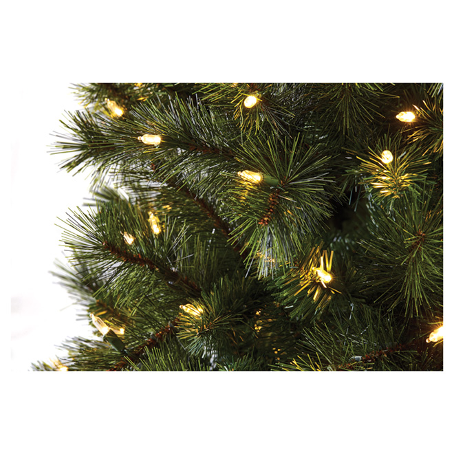 Illuminated Hayden Christmas Tree - 7.5' - 500 Lights