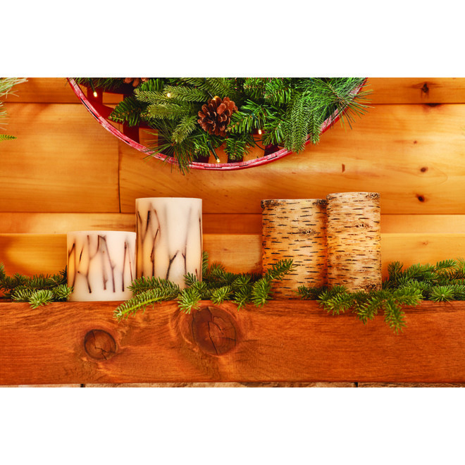 Holiday Living LED Wax Candle - Birch - 4-in x 6-in - Warm White
