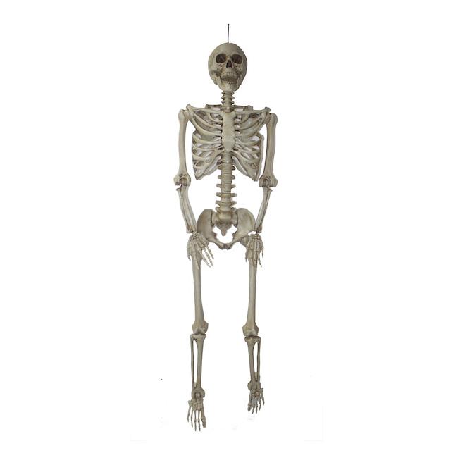 Holiday Living 5-ft Hanging Skeleton
