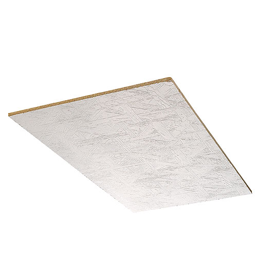 BP Canada Ceiling Panels - Chaparral - White - 2' x 4'
