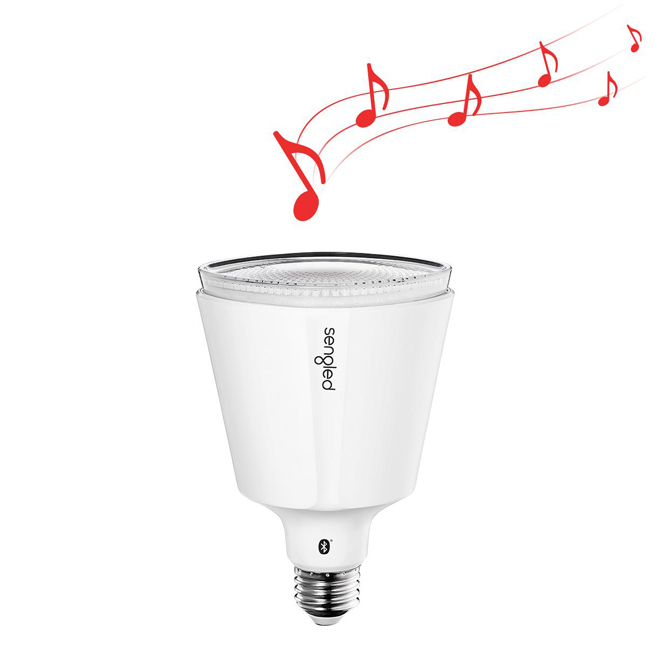 Solo Pro - 13W Bluetooth JBL Speaker - BR30 LED Bulb