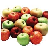 Arbre fruitier 5-en-1