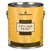 Waterborne Ceiling Paint - Ultra Flat - Base 1 - 3.67 L