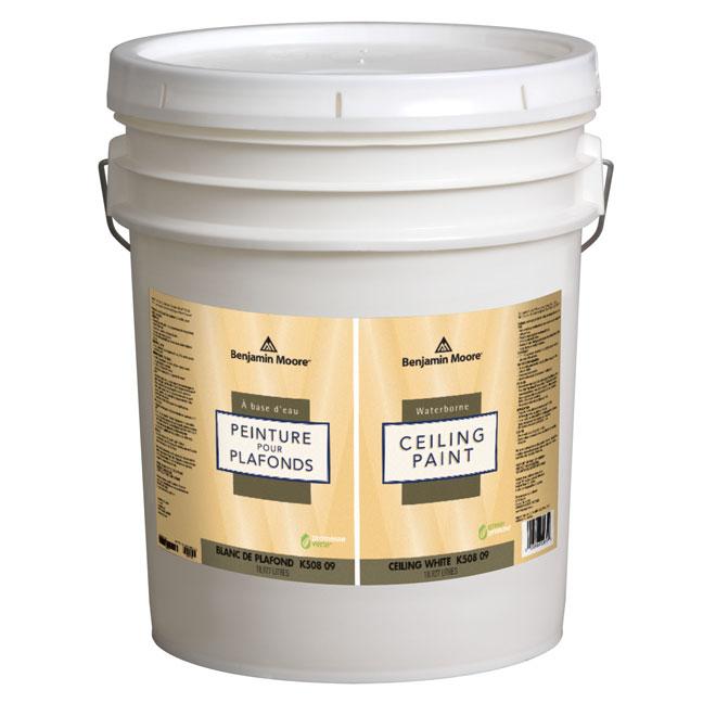 Waterborne Ceiling Paint - Flat - 18.9 L