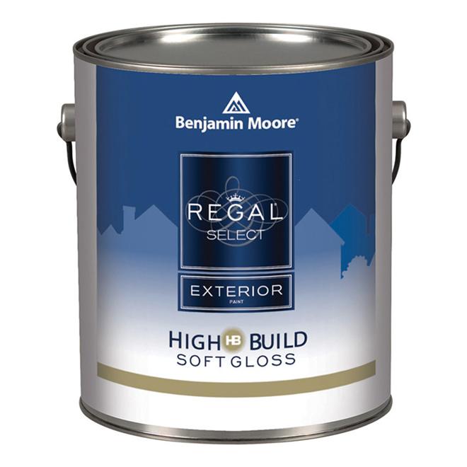 Exterior Paint - Soft Gloss Finish - White Base - 3.79 L