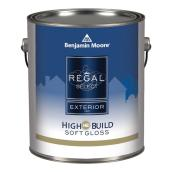 Exterior Paint - Soft Gloss Finish - White Base - 3.79 L