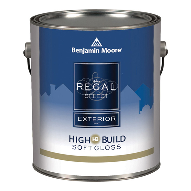 Exterior Paint - Soft Gloss Finish - White Base - 946 ml