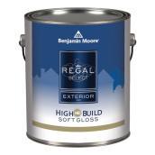 Exterior Paint - Soft Gloss Finish - White Base - 946 ml