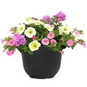 Jardinière fleurie, pot de 8 po