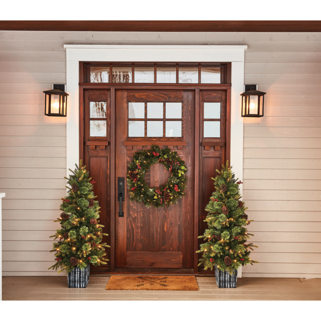 Holiday Living Lighted Potted Tree - Indoor and Outdoor - 50 Warm White - 4.5-ft