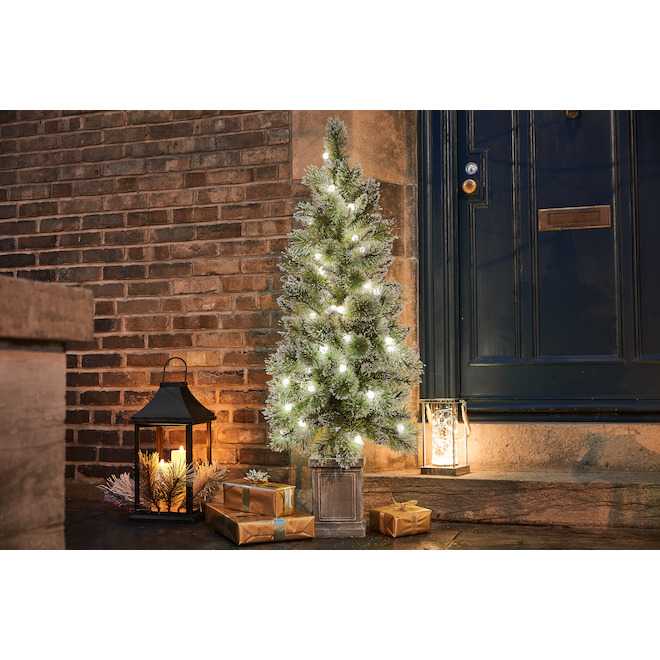 Holiday Living Lighted Potted Tree - Indoor and Outdoor - 60 Warm White - 4.5-ft