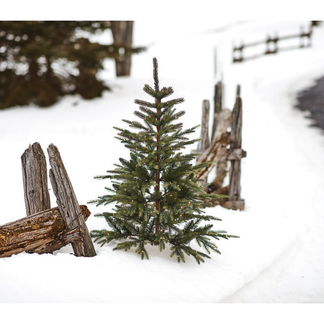 Holiday Living 4-ft Prelit Christmas Tree - 180 Warm White LED Rice Lights - 572 Tips