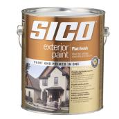 """Flat finish"" Exterior Latex Paint"