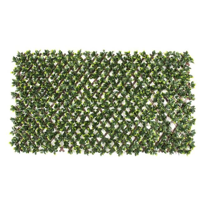 Nature Decor Expandable Gardenia Lattice - PVC 36-in x 72-in - Brown and Green