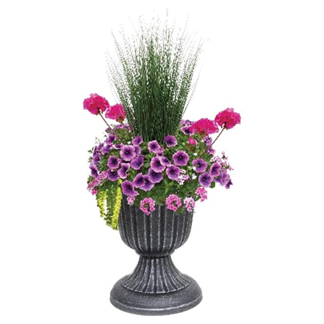 Outdoor Annual Floral Arrangement - 16'' Urn UP16