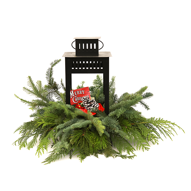 Assorted Greenery with Lantern - Indoor Use