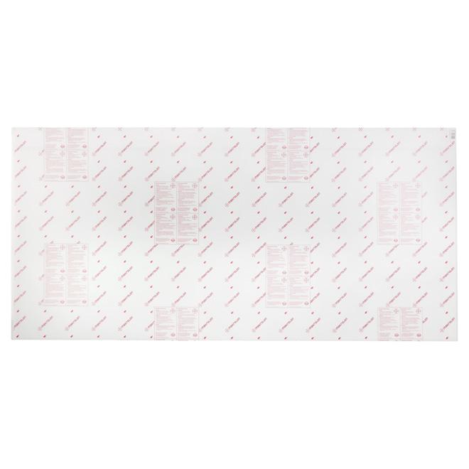 """Panneau en polycarbonate, 6 mm, 48"""" x 96"""", clair"""