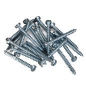 Screws - Half-Round - Steel - 20/Pk