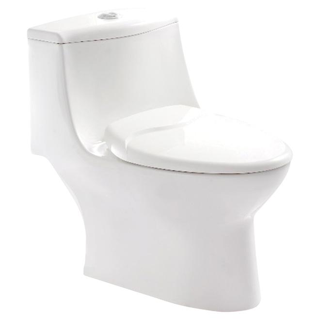 Elongated Front 1-Piece Toilet, 4 L/6 L, White | RONA