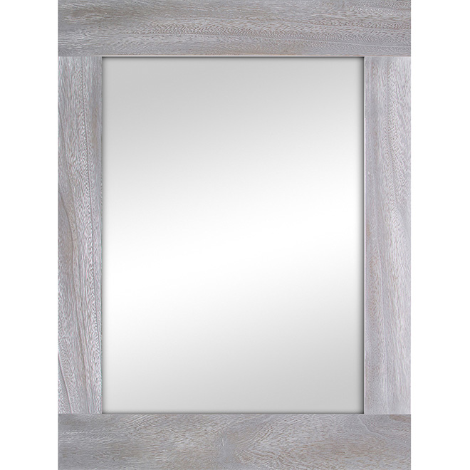 Miroir mural rectangulaire Columbia, 31 1/2 po x 47 1/2 po, argent métallique