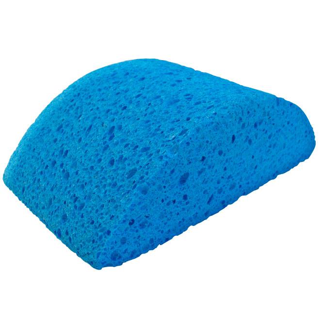 Turtleback Sponge for Wallpaper