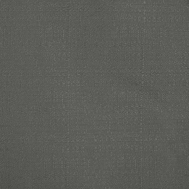 Commonwealth Baxter Back Tab Room Darkening Curtain 52-in x 84-in - Silver