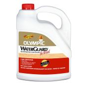 Waterproof Sealant - Clear - 3.78 L
