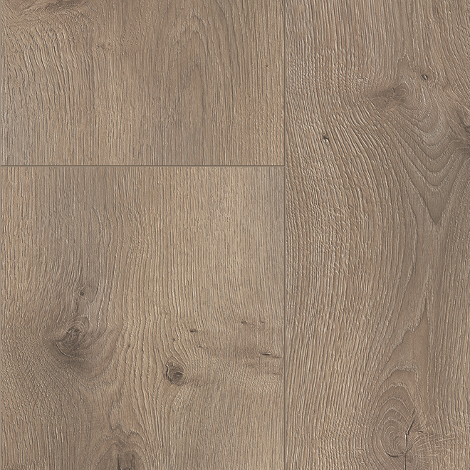 Laminate Flooring 12 Mm Frosted Oak Rona