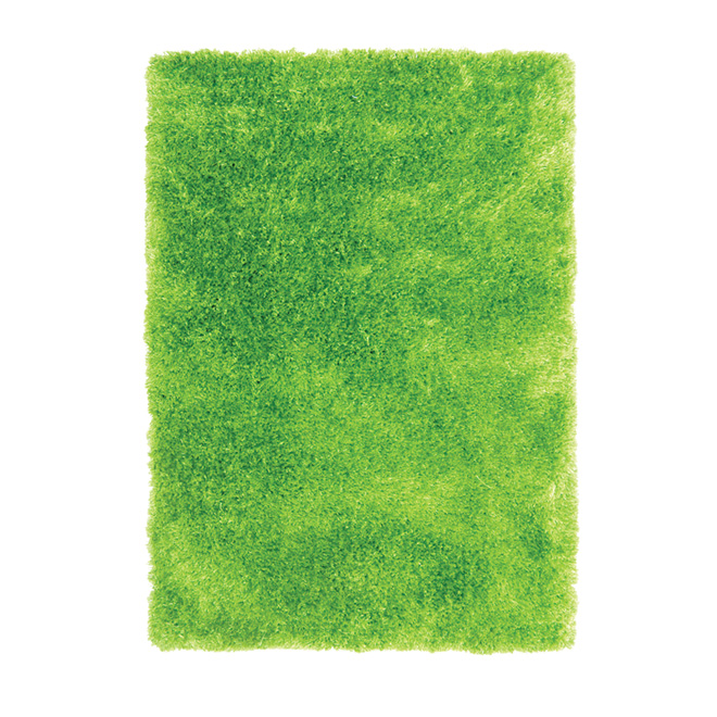 Tapis décoratif « Jazz » de 4 x 5 pi, vert