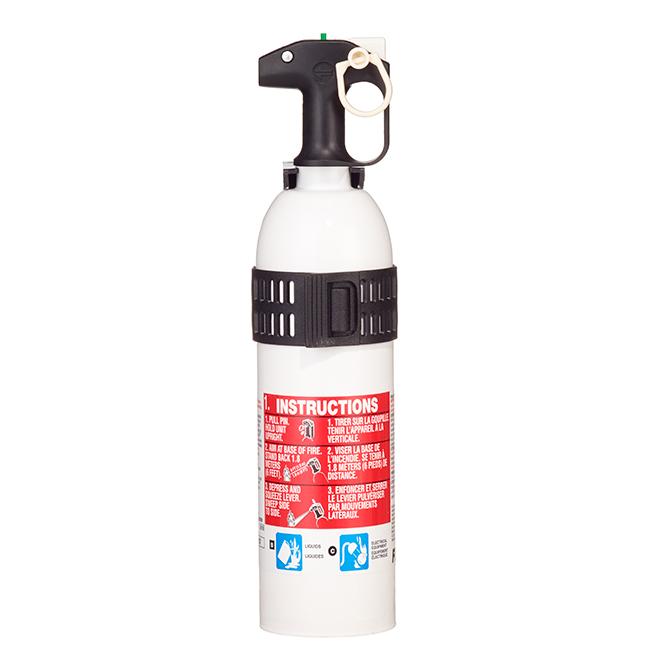 Extincteur pour usage marin Type 5-B/C, 2,5 lb, blanc