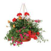 """Victorian"" Hanging Basket"