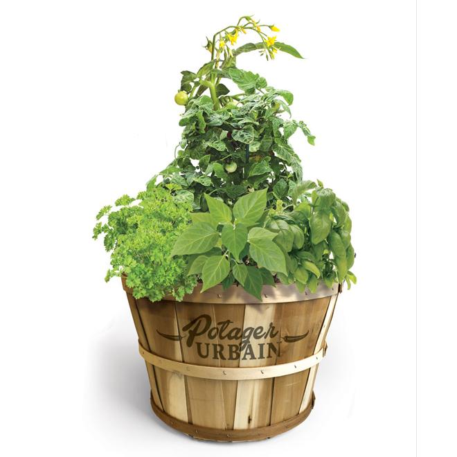 Urban Garden Wood Planter - Fresh Herbs/Vegetables - 14-in