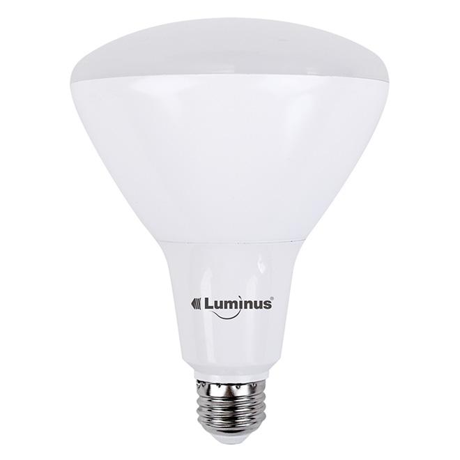 Ampoule DEL 17W