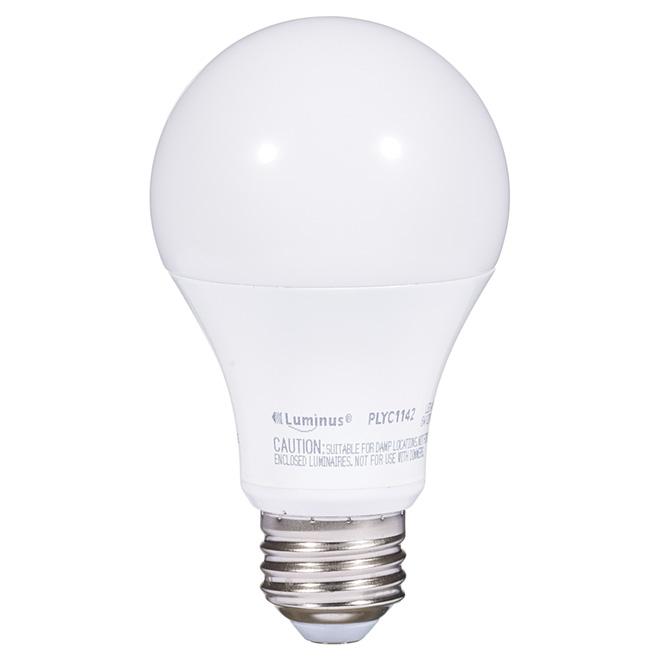 Ampoule DEL A19 6 W, intensité non réglable, blanc chaud