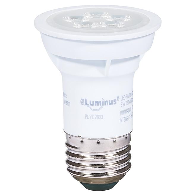 Ampoule DEL PAR16 5 W, intensité variable, blanc brillant