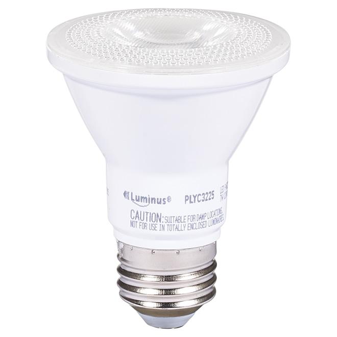 Ampoule DEL PAR20 7 W, intensité variable, lumière du jour