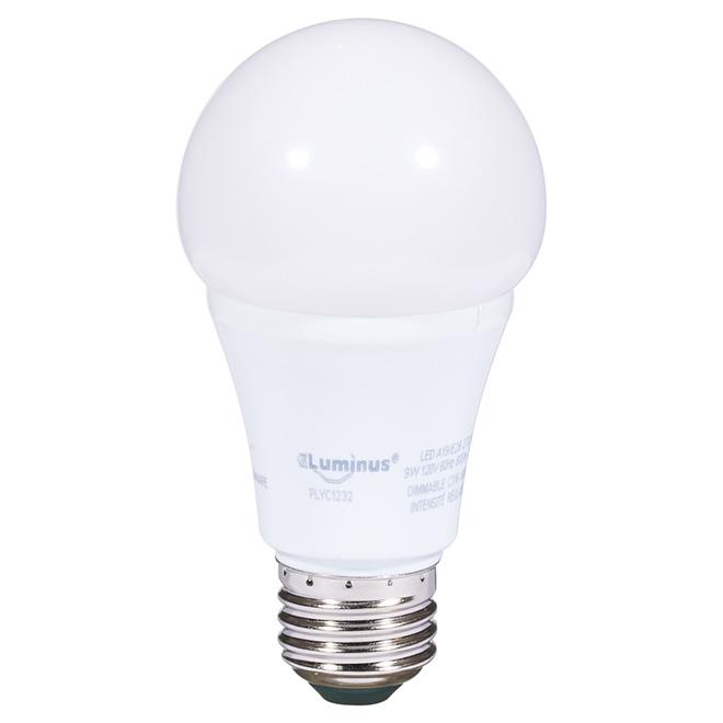 Ampoule DEL A19 9 W, intensité variable, blanc chaud