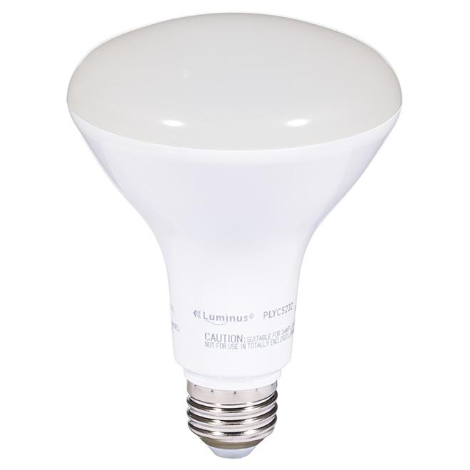 Ampoule DEL BR30 11 W, intensité variable, blanc chaud