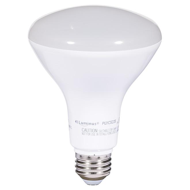 Ampoule DEL BR30 11 W, intensité variable, lumière du jour