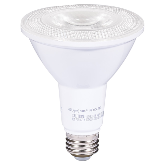 Ampoule DEL PAR30 12 W, intensité variable, blanc brillant
