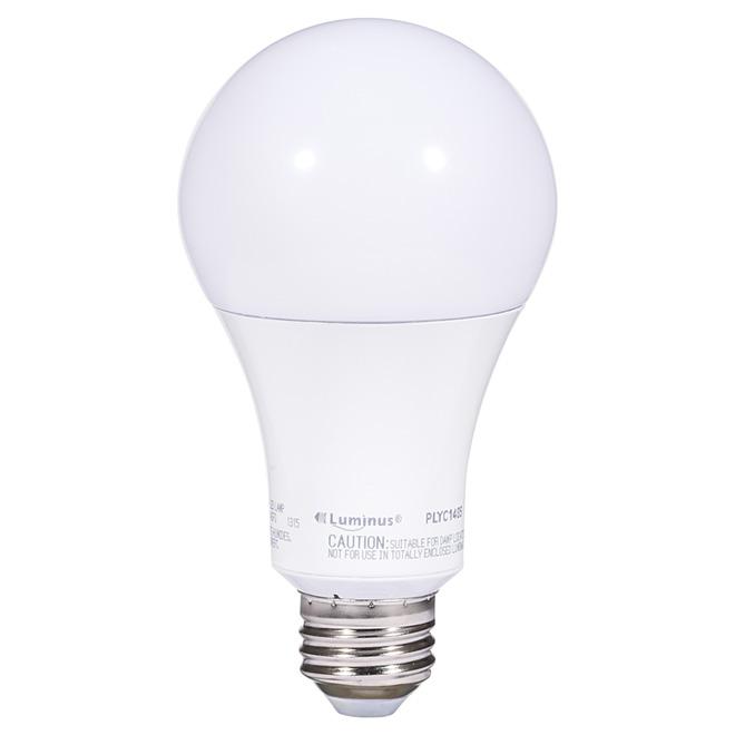 Ampoule DEL A21 15 W, intensité variable, lumière du jour