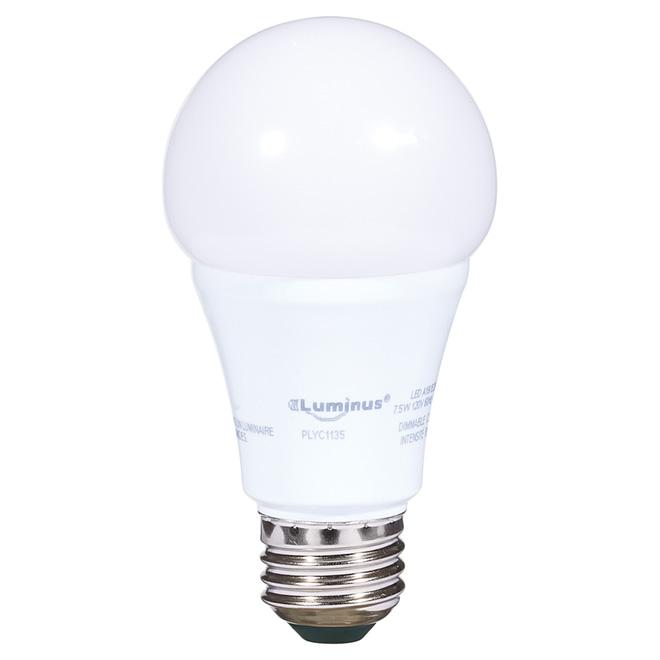 Ampoule DEL A19 7,5 W, intensité variable, lumière du jour