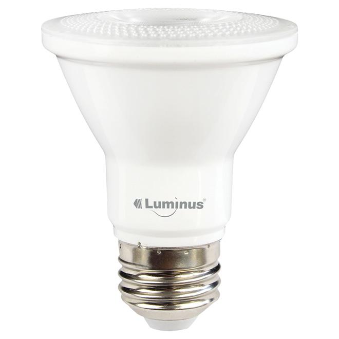 Ampoule DEL PAR20 6 W, intensité variable, pqt/6