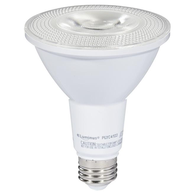 Ampoule DEL PAR30 12 W, intensité variable, blanc brillant